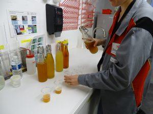 Dégustation bières Kronenbourg brutes